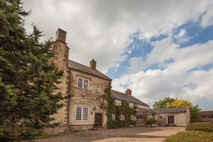 Park Farm House, Cannington - Cannington - Bed & Breakfast
