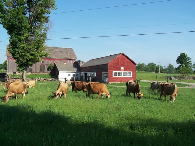 Come stay on a real VT dairy farm! - West Pawlet - Casa