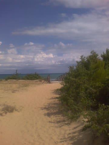 the housright in front of the beach - Foce Varano - Apartamento