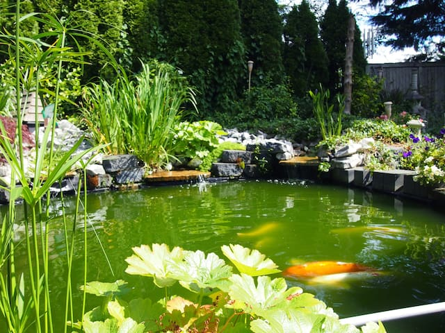 KOI POND AND TEA HOUSE WITH GARDENS - Mill Creek - Haus