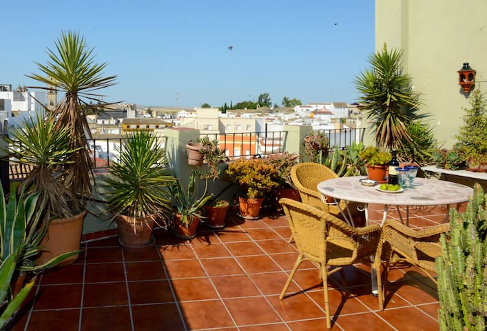 Bright & spacious apartments with views cathedral - Jerez - Apartment