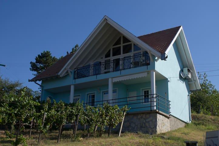 for rent wine house with airco - szederkeny - Casa