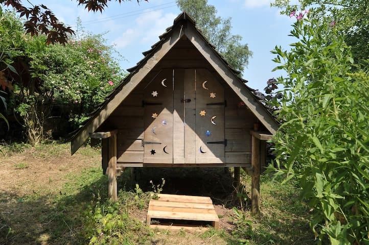 Stargazer in country garden - Holcombe Rogus - Inny