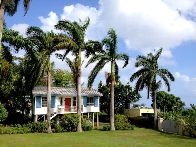 Eden Villa - walk to beach in 5 min - Boscobel - Vila