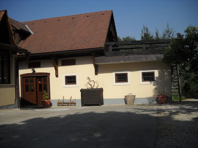 Heaven on Earth  - Brežice - 25 km from Zagreb (Croatia) - Daire