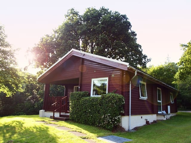 Ruskin Lodge, traditional log cabin - Dunoon - Chalet