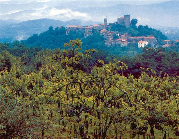 Tuscany, ancient village, st-house - Bagnone - Huis
