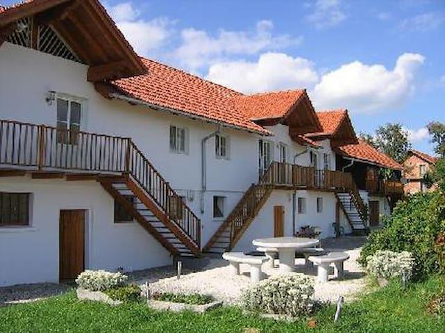 Between Linz-Salzburg-Passau-Ried - Aigelsberg - Appartement