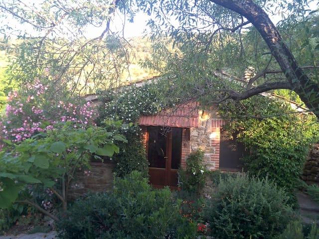 Natursteinhaus im Olivenhain - Panicale - Huis
