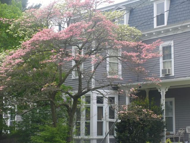 Getaway to NW CT-Apt in Victorian - Winchester - Lakás
