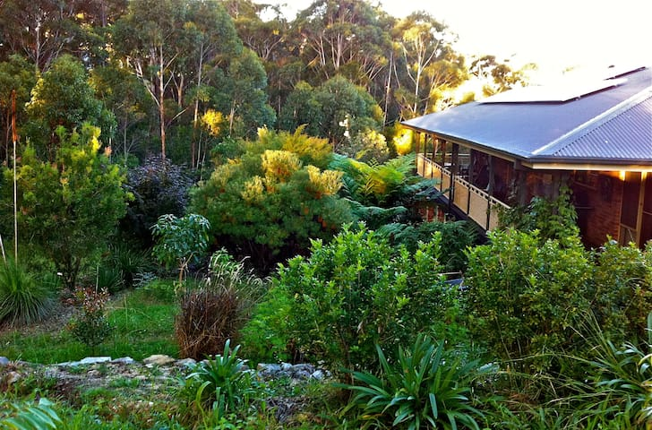 The Forest Room - Nambucca Heads - Huis