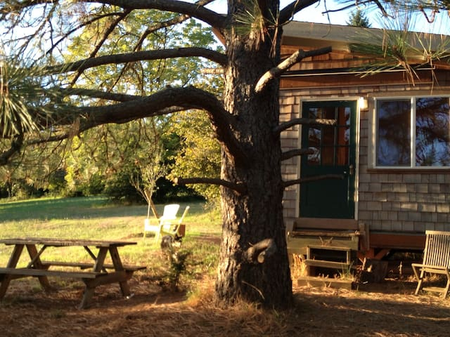 Private Wine Country Farm Bunkhouse - Dundee - Hytte