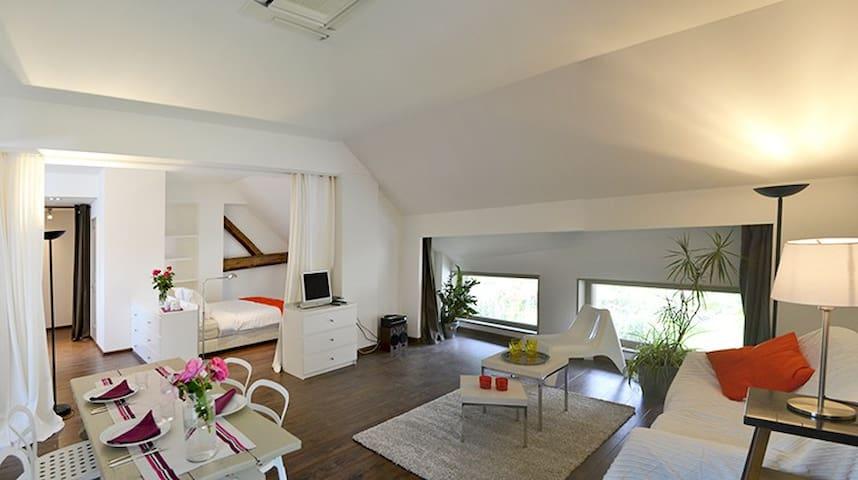 MODERN LOFT WEEKLY RENTAL in Savoie - Saint-Pierre-d'Albigny - Çatı Katı