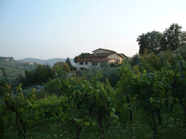 Villa on the hills of Florence - Scandicci - Lejlighed