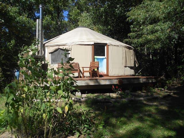 The Light Center's Pacific Yurt - Baldwin City - Yurta