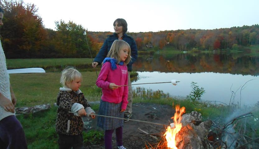 Cozy Campfires Under Starlit Skies - South Kortright - Haus