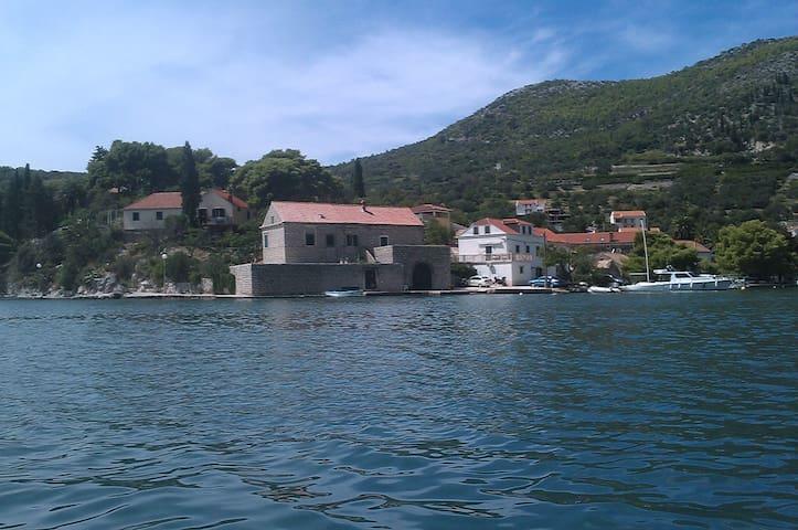 Charming Villa on seashore in Zaton - Dubrovnik - Villa