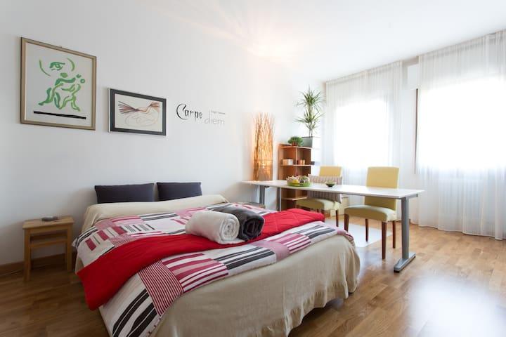 Huge room:Explore VENICE&TREVISO - Mogliano Veneto - Casa