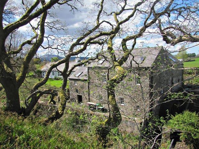 16th century watermill and ecospot - Balmaclellan - Hus