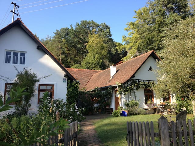 Hannas-Landhaus - Jennersdorf - Bed & Breakfast