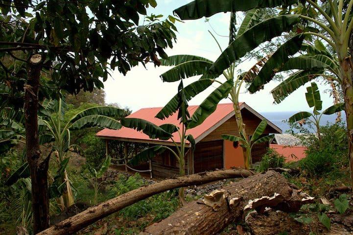Crayfish Bay Organic Estate Grenada - victoria