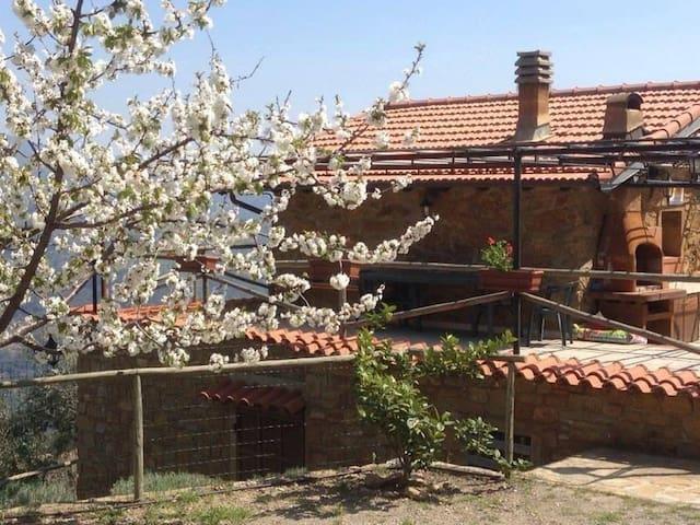 Casa a due piani immersa in vigneto - Dolceacqua  - Rumah