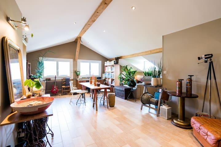 Loft nearby Geneva - Nangy - Appartement