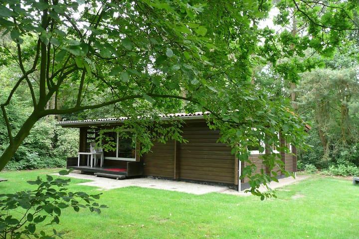 Finse bungalow op Vakantiepark - Meppen - Bungalov