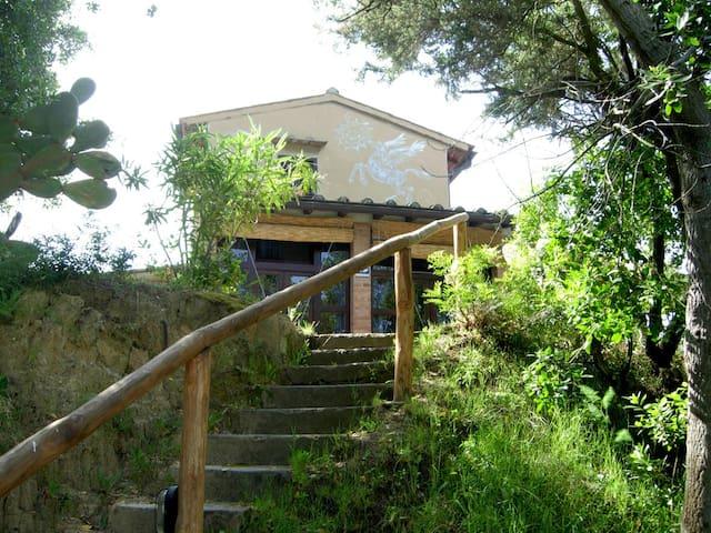 Elba Procchio 300 mt. from the sea - Procchio - Huis