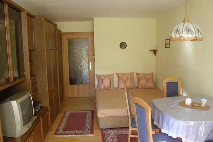 Holiday Apartement 9 Maria Alm - Saalfelden - Apartamento