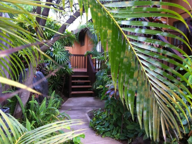 Aloha Studio - Steps to the beach - Kihei - Appartement