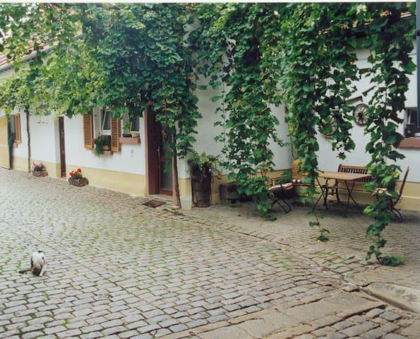 Winzerhof Fewo II - Essingen - Apartmen