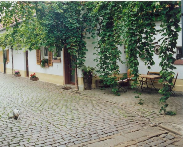 Winzerhof Fewo II - Essingen - Appartement