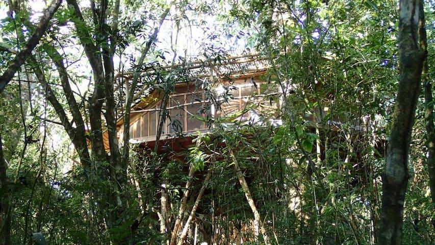 Dream Catcher Tree House - San Rafael Abajo