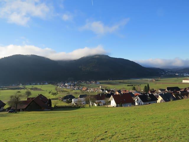Urlaub in Ochsenwirts Ferienwohnung - Fischerbach - Leilighet