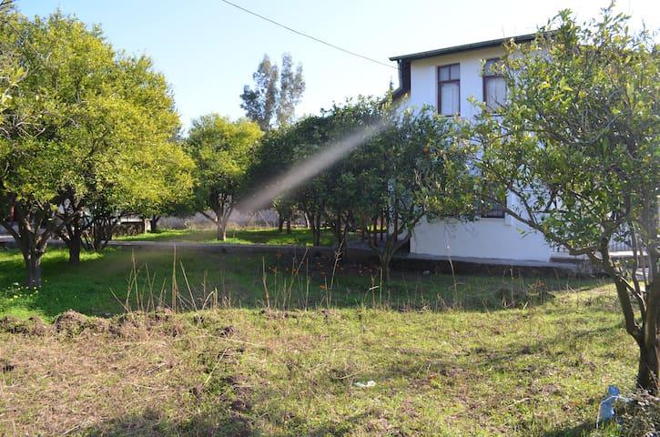 Ferienhaus & Bio Orangen- garten - Konyaaltı - Rumah