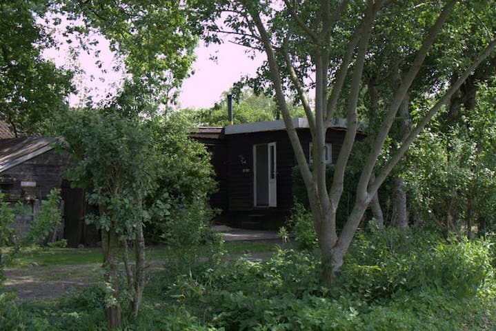 vakantiehuis, Het zwarte schaapje - Zuidwolde - キャビン