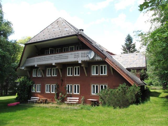 Urlaub im Schwarzwald - Sankt Blasien - Appartement