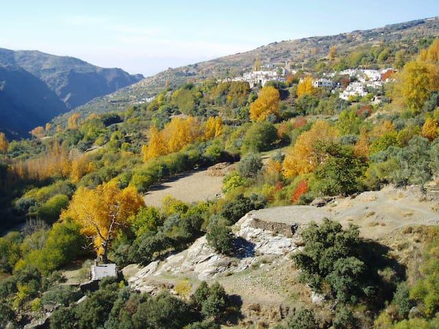 Casa Barbara in The High Alpujarras - Ferreirola, La Taha - Hus