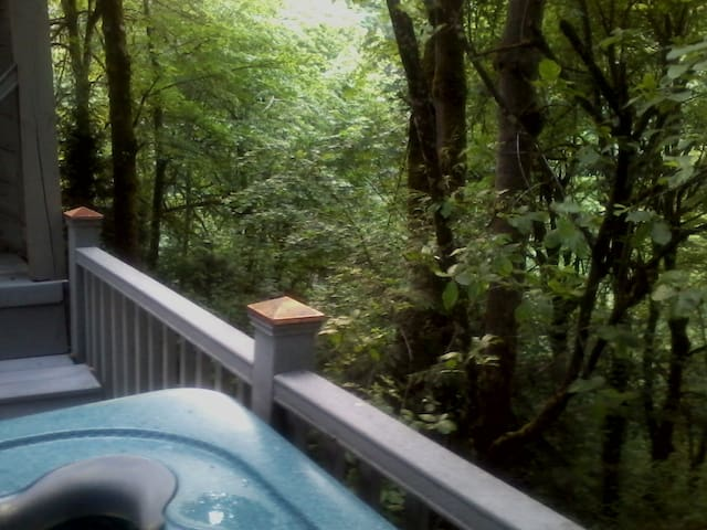 The TreeHouse 1 Bedroom Apt/Suite Bed & Breakfast - West Linn - Appartement