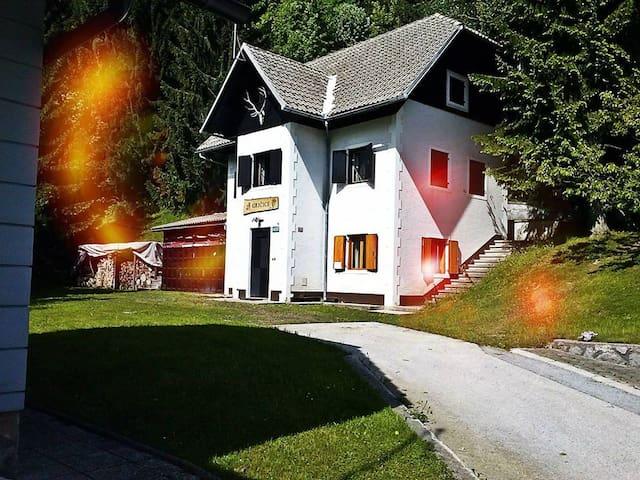 Ski&Spa apartment house - Črmošnjice - Almhütte