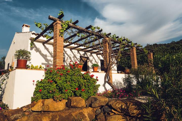 Casa Tranquila, a hidden paradise! - Álora - House