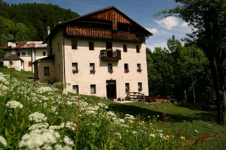 The best spirit of the valley - Forno di Zoldo - Bed & Breakfast