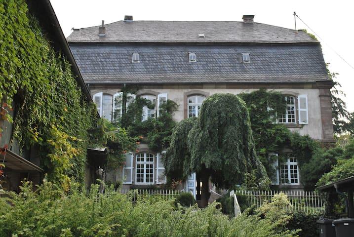 Living in an ancient castle  - Merzig - Oda + Kahvaltı