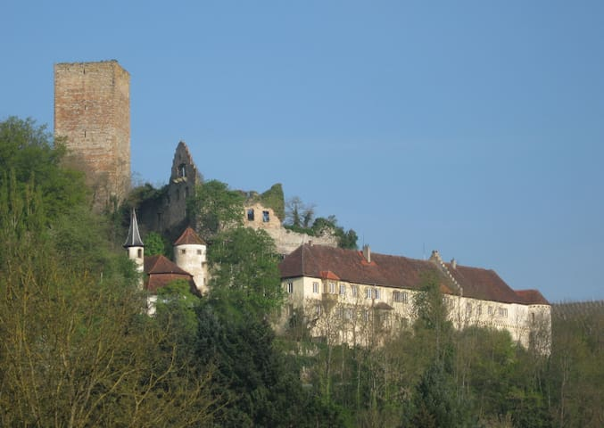 Holiday on a medieval castle - Bad Rappenau - Heinsheim - Departamento