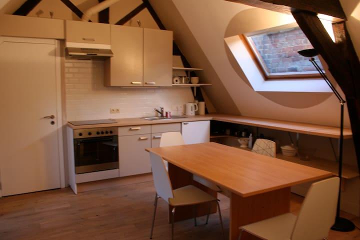 bel et vaste appartement rénové  - Mons - Departamento