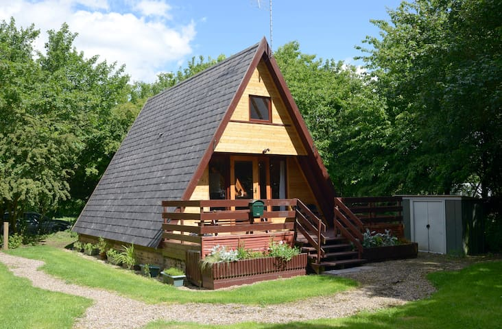 Quirky cabin in tranquil woodland - Grafham - Hytte
