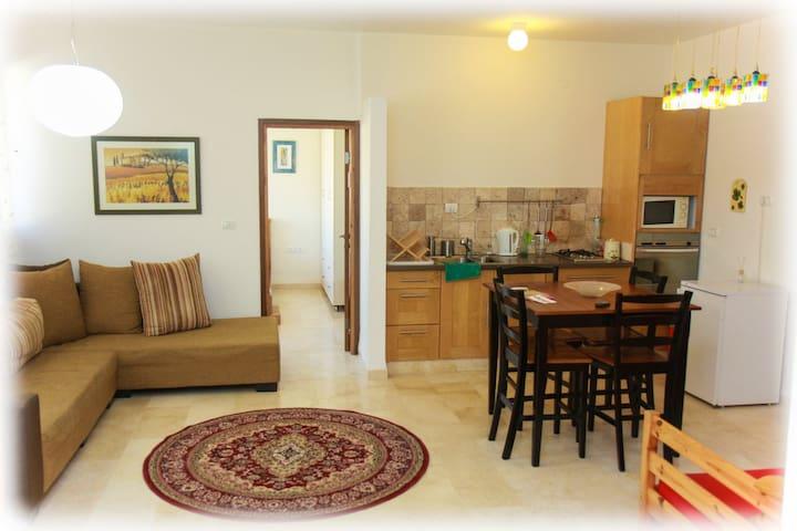 Nof LaGilboa Lodge, Family Room - Beit HaShita - Loft空間