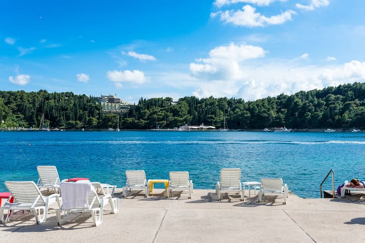 Beautiful room 5 m from the sea No2 - Cavtat - Hus