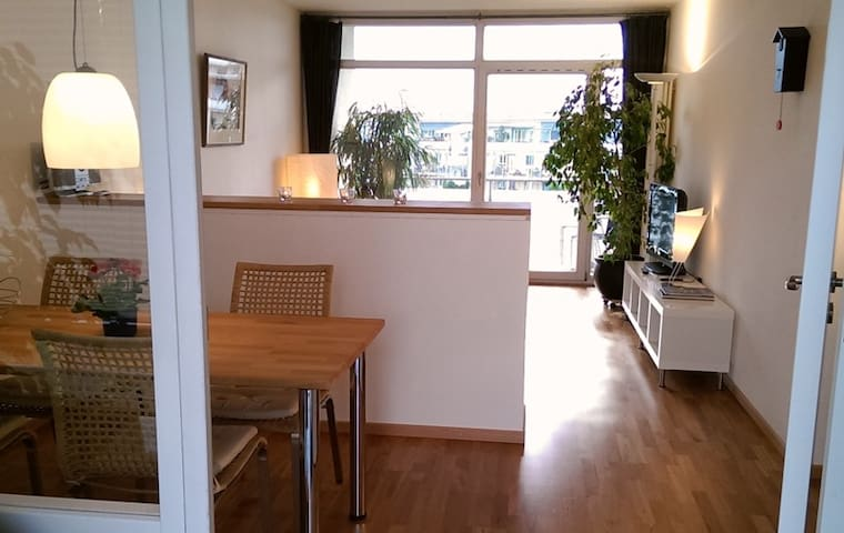 Bright appartment with sky view - Freiburg - Apartemen